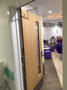 Maple Door Single